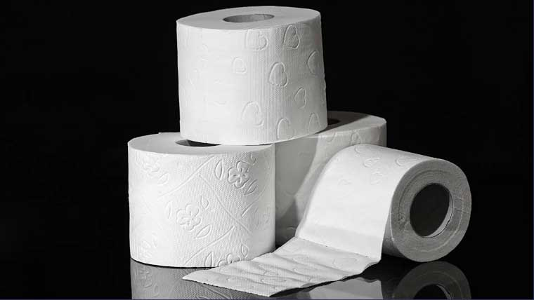 Your Septic System: Why Toilet Paper Matters