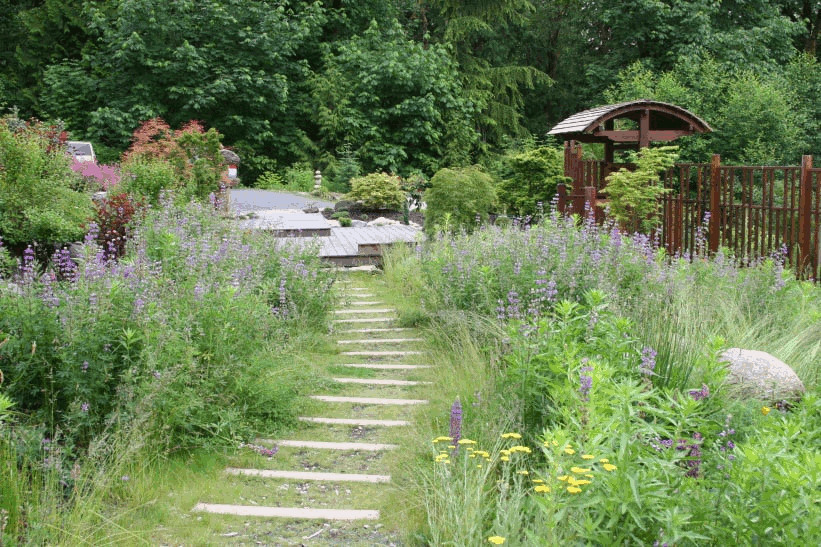 Can I Plant a Garden Over my Septic Drainfield?